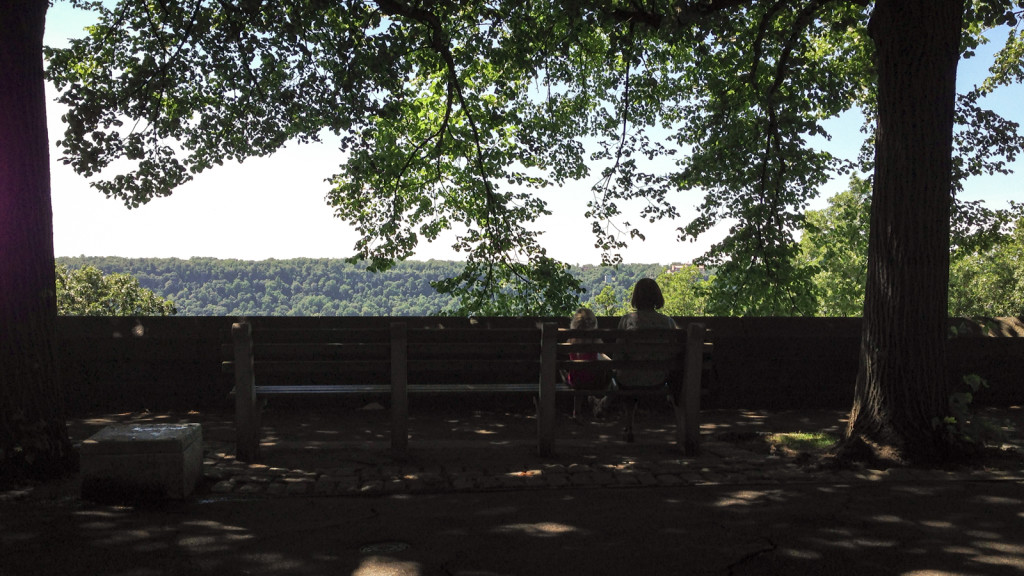 Looking at the New Jersey Palisades from Fort Tryon Park, Father's Day 2014